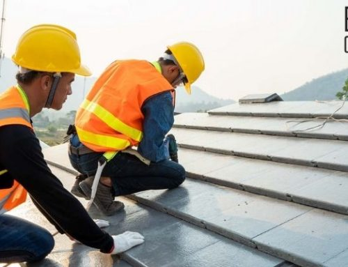 Protect Your Home: 5 Roof Maintenance Tips You Shouldn't Ignore